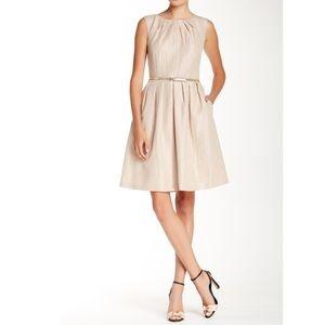 Ellen Tracy Sleeveless Beige Shimmer Dress